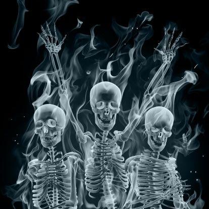 http://onejohnmitchell.files.wordpress.com/2012/08/xray-skeletons1.jpg