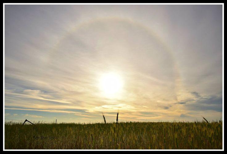 Sunrise Solar Halo From Spokane Washington By Lou Pence