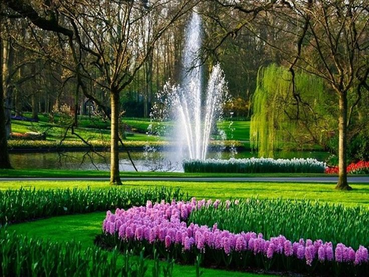 Beautiful flower garden with fountain for Beautiful flower landscapes