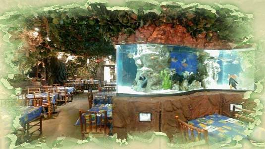 Rainforest Café, eten in een tropisch regenwoud- inclusief levensgrote (fake) dieren