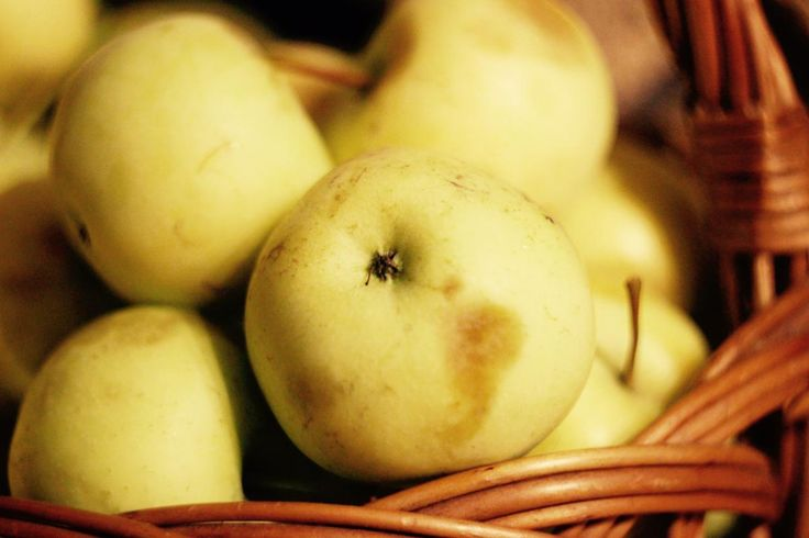💚 apples fruits food - new photo at Avopix.com    🆓 https://avopix.com/photo/24141-apples-fruits-food    #fruit #apples #apple #fruits #food #avopix #free #photos #public #domain