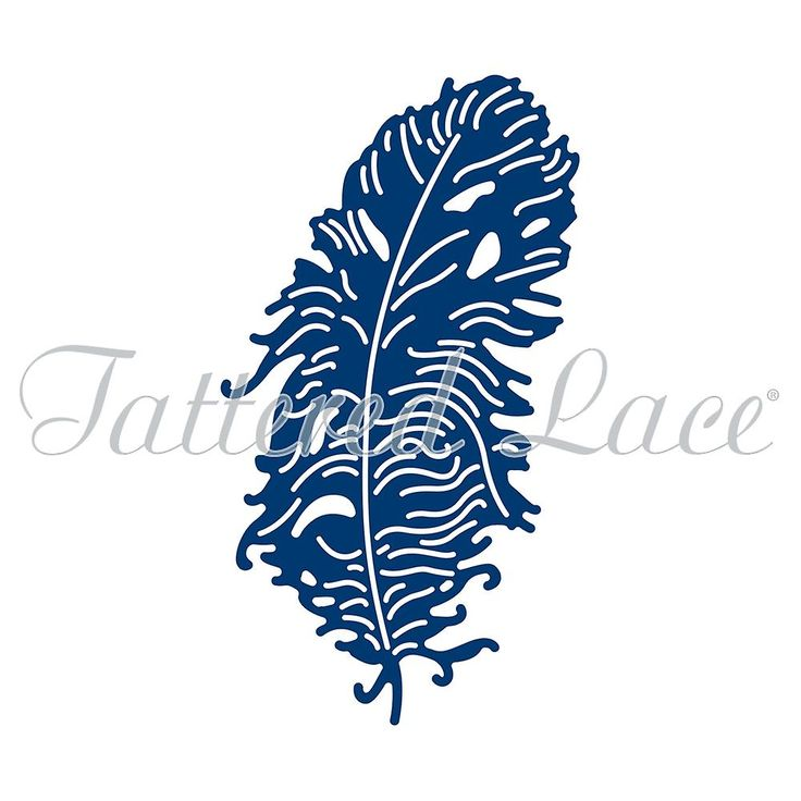 Tattered Lace Charming Feather Die | Fruugo
