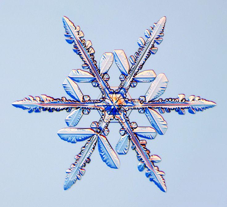 Snowflakes                                                                                                                                                                                 もっと見る