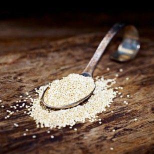 Kleine Powersamen: Quinoa hält lange satt und stärkt das Immunsystem.