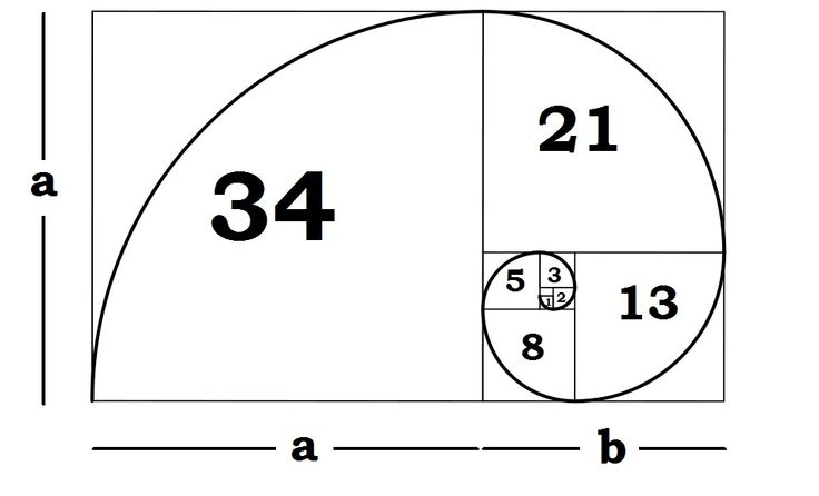 The Fibonacci Sequence The Fibonacci sequence is possibly the most simple recurrence relation occurring in nature. It is 0,1,1,2,3,5,8,13,2...