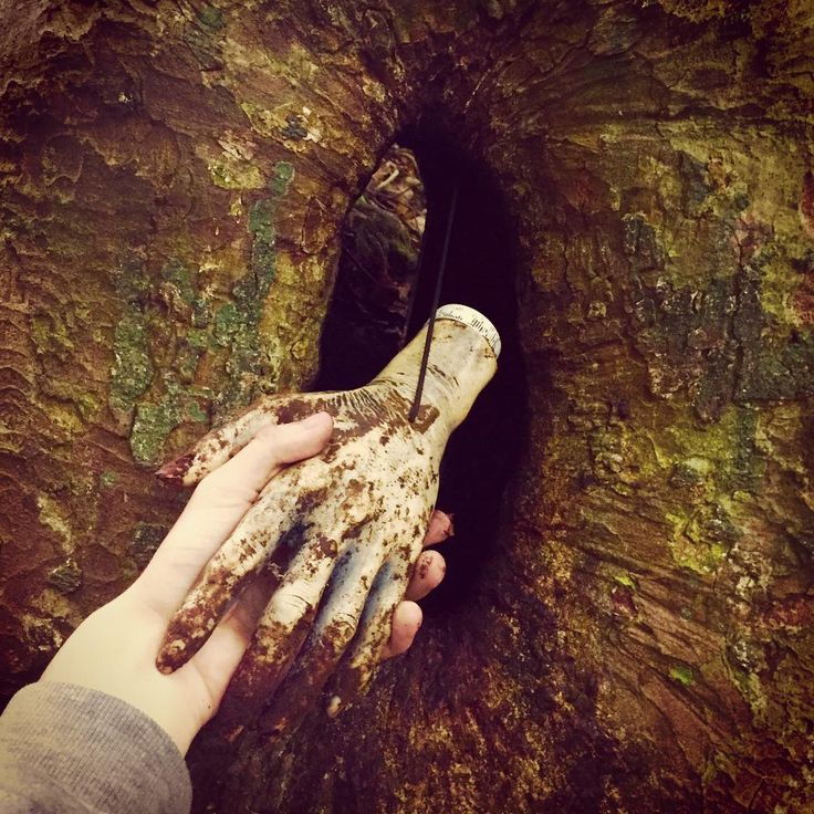 """Hi, nice to meet you; I'm a geocacher. You're a geocache I presume?"" (Instagram photo by my_geocaching_adventures) #IBGCp"