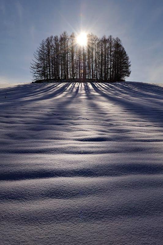 The Sun and Shadows