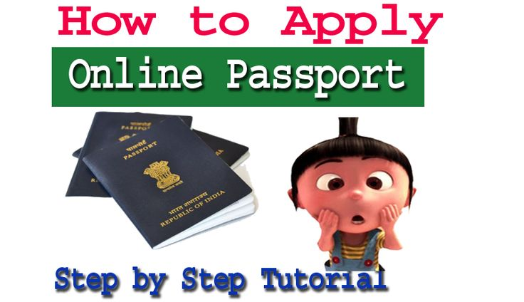 Learn Online Passport Application Process Step by Step guide with picture How to apply Passport Application Online and Book passport Appointment