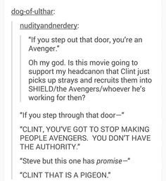 hawkeye recruiting a pigeon funny - Google Search