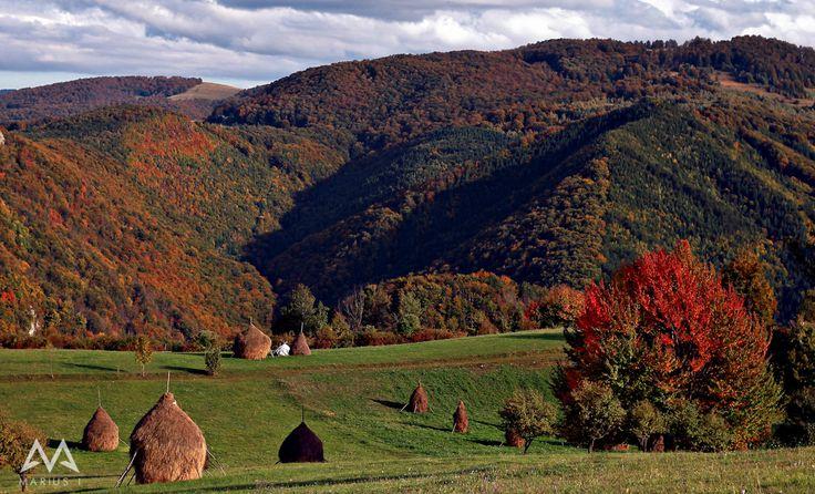Vedere din satul Damiș | Bihor in imagini