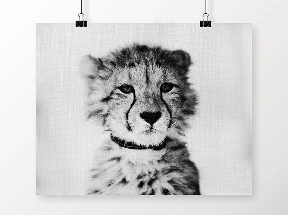 Jungle Nursery, Baby Cheetah Print, Baby Animal, Nursery Decor, Jungle Animals, Wild Animals, Baby Animal Prints, Nursery Wall Decor by SimonandKabuki