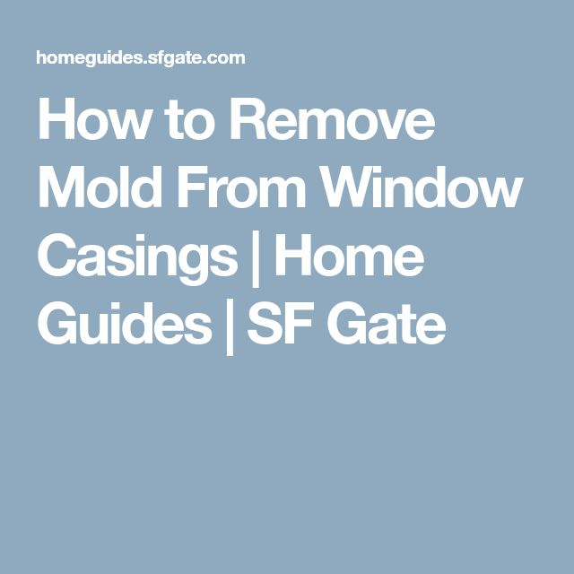 How to Remove Mold From Window Casings | Home Guides | SF Gate