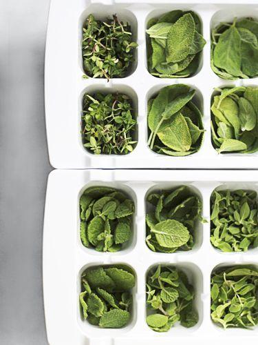 毎日の料理にハーブを使うと、香りが良くなるだけでなく、様々な効能も期待できます。ハーブにはたくさんの種類があり、それぞれ味も香りも違うので、メニューに合わせていくつか常備しておきたいもの。ドライハーブも便利だけど、出来ればフレッシュなものをいつも使いたい。そんなとき、冷凍保存がおすすめなんです!