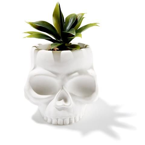 Skull Artificial Plant | Kmart