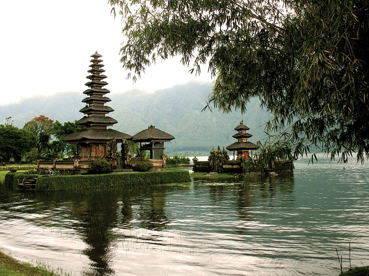 Que faire lors de votre voyage à Bali ? Située juste en dessous de l'équateur, Bali vous éblouit par sa beauté et ses plages. Si beaucoup de touristes s'y rendent pour se reposer et profiter de leurs vacances sans trop …
