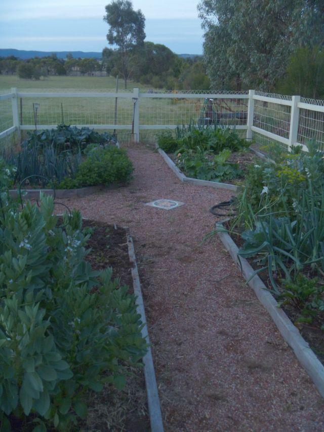 Vegetable garden: Kangaroo, rabbit and dog proof. 'Sundon', Merrimu, Victoria, Australia