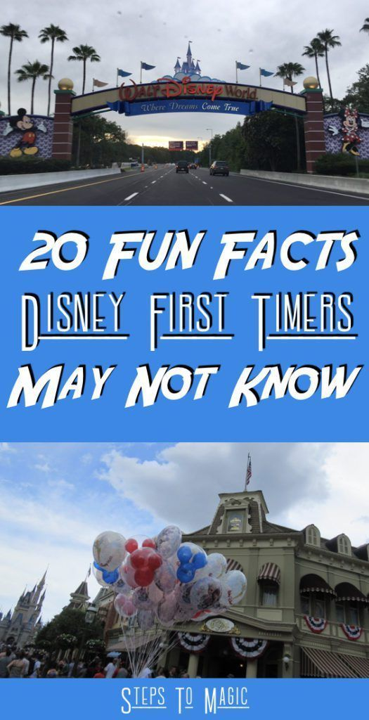 Disney World Tips than can definitely help you enjoy your FIRST (or any) Disney World trip more! |  20 things that we wished someone would have told us before our first trip to Walt Disney World!