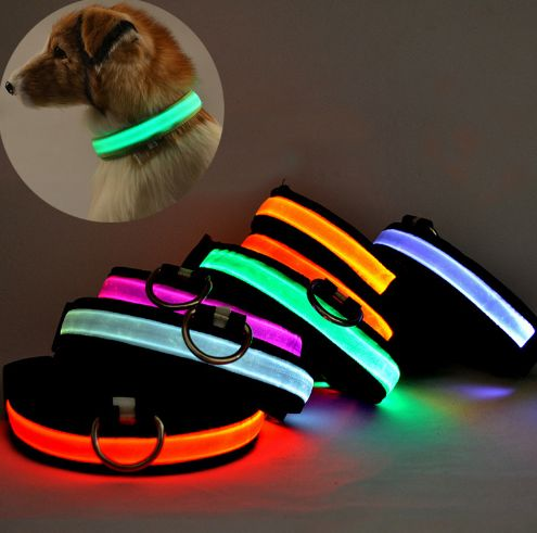 LED Glow Dog Collar USB Rechargeable FREE Shipping