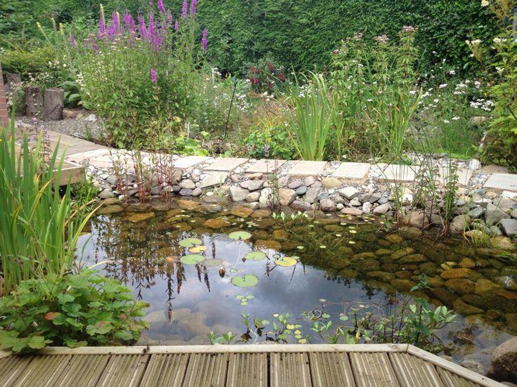 23 best wildlife ponds images on pinterest backyard for Wildlife pond design uk