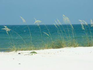 St. George Island- my 2nd home: Exotic Travel, Future Retirement, Future Time, Favorite Places, George Islands, Beautiful Beaches, Florida R, Fun Places, Vacations Dreams