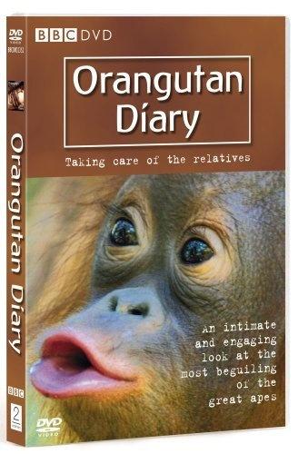 Orangutan Diary - Series 1 DVD - Michaela Strachan, Steve Leonard - Click on picture for details