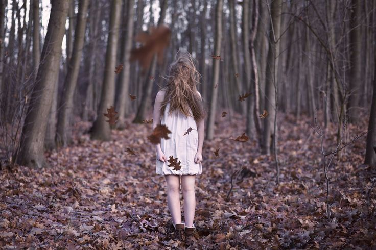 (1/365) Autumn.
