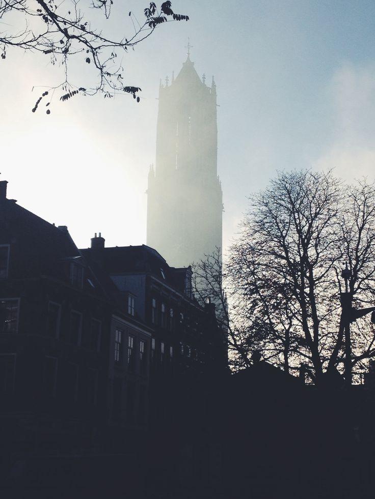 Morning glory # Utrecht