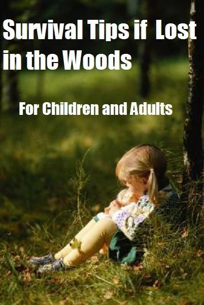 Survival Tips if Lost in the Woods For Adults and Children
