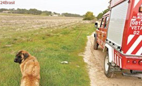 Corpo de Bombeiros Voluntários de Aljezur, Portugal, já resgataram 5 animais este ano