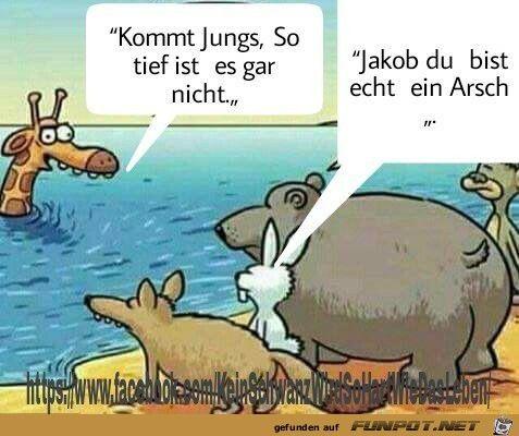 lustiges Bild 'Ist nicht so tief.jpg' von Steffen. Eine von 621 Dateien in der Kategorie 'Cartoons / Comics' auf FUNPOT.