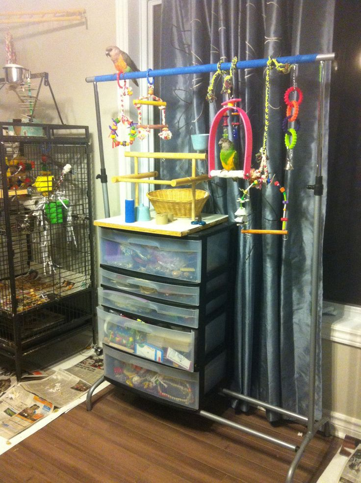 ♥ Pet Bird DIY Ideas ♥  Parrot play stand from Ikea Garment Rack. Easy to assemble, very affordable. I can even pack it up for company so I don't look like a crazy bird lady!