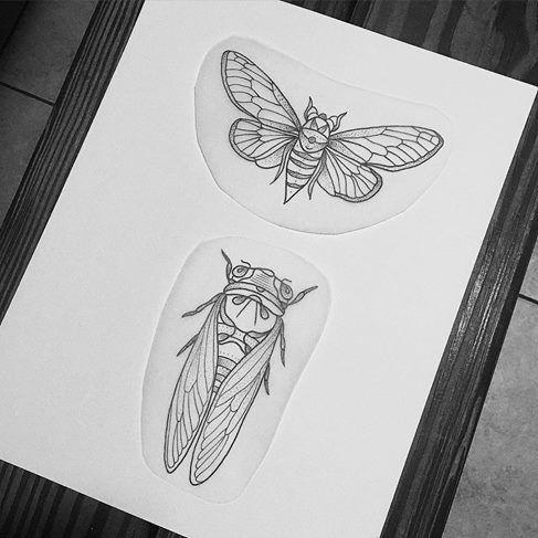 best 25 cicada tattoo ideas on pinterest scientific tattoo mens floral chest tattoo and. Black Bedroom Furniture Sets. Home Design Ideas
