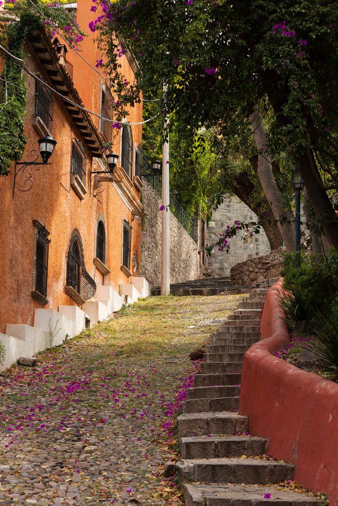 San Miguel de Allende Guanajuato Mexico 538