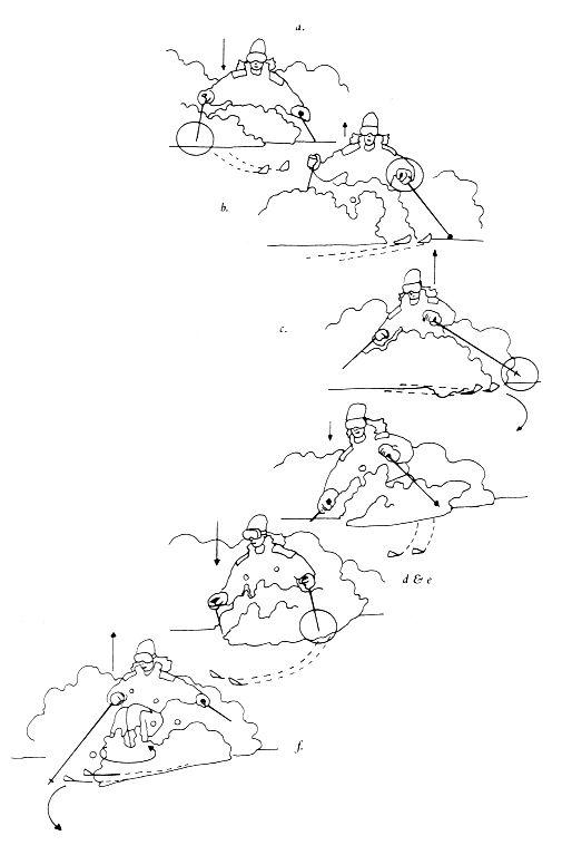 Универсальный горнолыжник. Ваш путь к мастерству. Марк Эллинг.