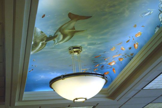 underwater ceiling: Ceilings Treatments, Underwater Ceilings