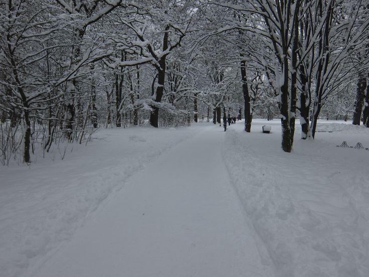 Winter landscape@Hirschgarten Munich