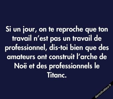 If one day, someone approaches you and tells you your work isn't professional, tell yourself that amateurs built the arch of triumph, and professionals- the Titanic