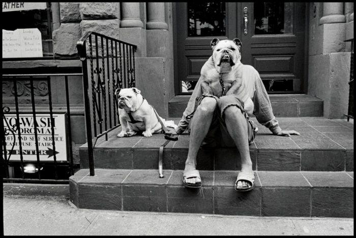 New York city 2000