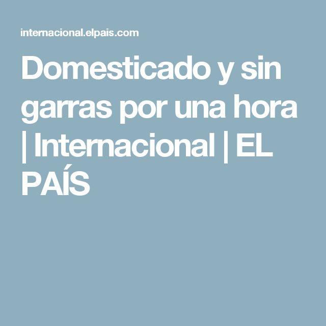 Domesticado y sin garras por una hora | Internacional | EL PAÍS