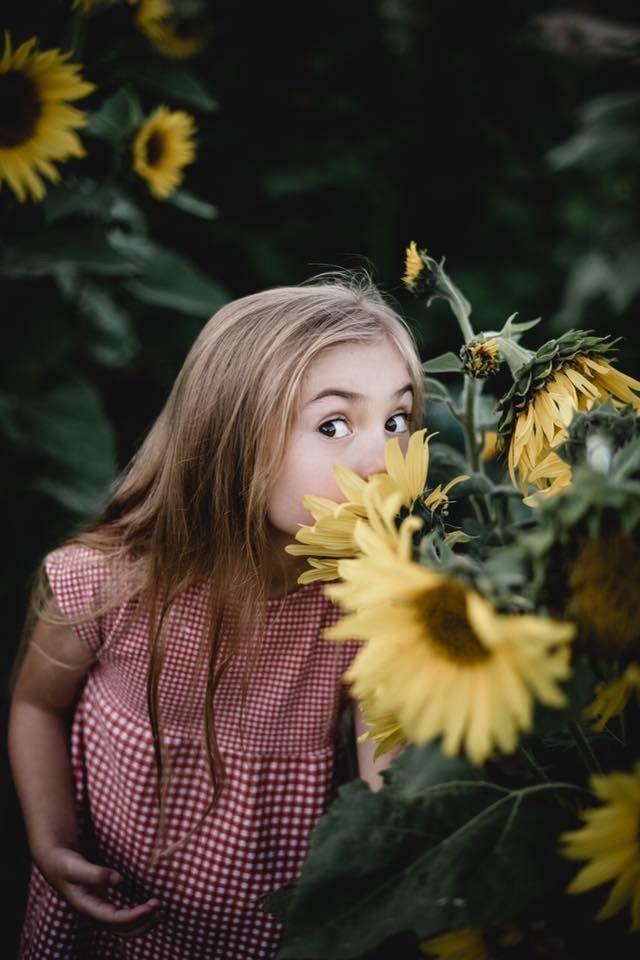 Große Sonnenblumenliebe 🌻