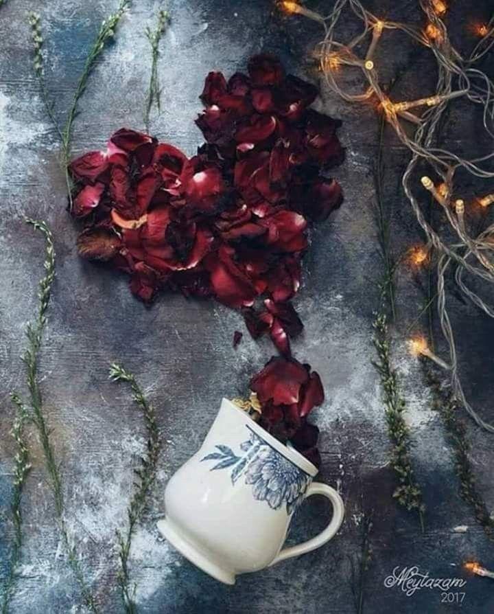 يارب أيام جميله وأخبار مفرحه و شعور جم يل و نفس مقتنعه و قلب مرتاح و راحة بال و توفيق من عندك Beautiful Wallpapers Flowers Peppercorn