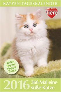Katzen-Tageskalender 2016