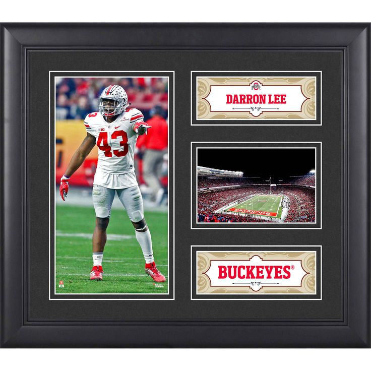 "Darron Lee Ohio State Buckeyes Fanatics Authentic Framed 15"" x 17"" Collage - $39.99"