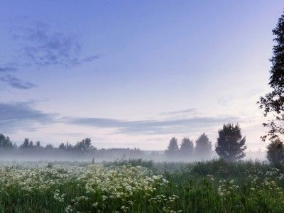 Over two thirds of the world's people who experience the Midnight Sun live in Finland. In the northernmost parts of Finnish Lapland, the sun stays above the horizon for over 70 consecutive days.