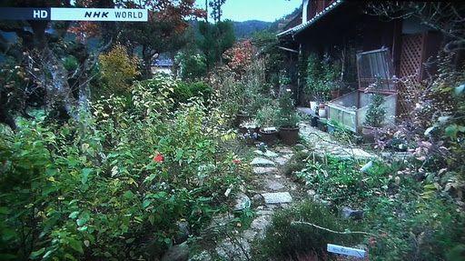 Venetya Garden