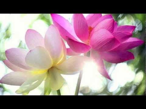▶ ♥ Méditation du sourire et de l'amour intérieur ♥ - YouTube