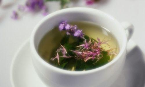 Soğuk günler için bitki çayı klavuzu
