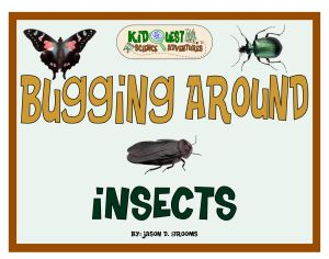 Insect Book | KidQuest Science Adventures