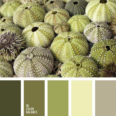 beige verdoso, color del espárrago, color pantano, color verde pistacho, gris verdoso, oliva, paleta de colores monocromática, paleta del color verde monocromática, tonos verdes, verde amarillento, verde grisáceo, verde lechuga claro.