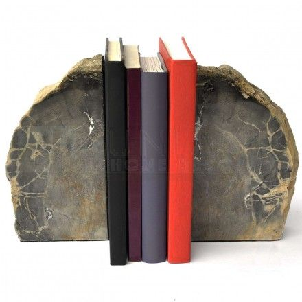 9-inch Polished Petrified Wood Bookends